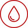 Основа проращивания – чистая фильтрованная вода